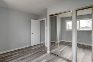 Photo 16: 228 Lynnwood Drive SE in Calgary: Ogden Detached for sale : MLS®# A1103475