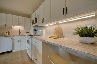 Photo 1: 309 8604 Gateway Boulevard in Edmonton: Zone 15 Condo for sale : MLS®# E4257711