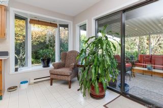Photo 9: 3991 Hopesmore Dr in VICTORIA: SE Mt Doug House for sale (Saanich East)  : MLS®# 801374