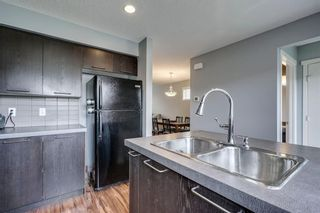 Photo 11: 42 COPPERPOND Place SE in Calgary: Copperfield Semi Detached for sale : MLS®# C4270792