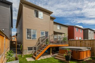 Photo 31: 163 EVANSBOROUGH Crescent NW in Calgary: Evanston Detached for sale : MLS®# A1012239