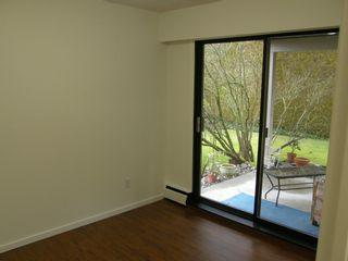Photo 43: 20319 DEWDNEY TRUNK ROAD in MAPLE RIDGE: Home for sale : MLS®# V1044822