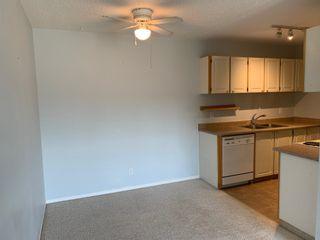 Photo 9: 211 10511 19 Avenue in Edmonton: Zone 16 Condo for sale : MLS®# E4262228