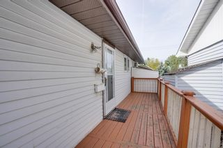 Photo 10: 3307 39 Street SE in Calgary: Dover Detached for sale : MLS®# A1148179