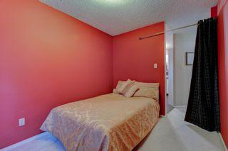 Photo 33: 202 8503 108 Street in Edmonton: Zone 15 Condo for sale : MLS®# E4253305