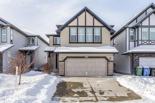 Main Photo: 1200 BRIGHTONCREST Common SE in Calgary: New Brighton Detached for sale : MLS®# A1066654