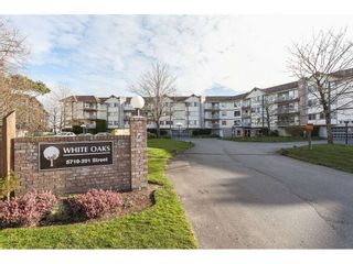 Main Photo: 317 5710 201 Street in Langley: Langley City Condo for sale : MLS®# R2552082