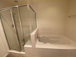Photo 7: LA JOLLA Townhouse for rent : 4 bedrooms : 2848 Torrey Pines Rd