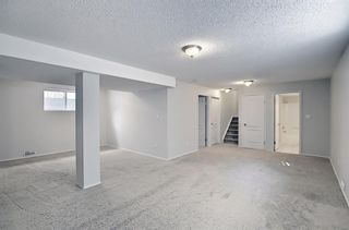 Photo 32: 253 Elgin Way SE in Calgary: McKenzie Towne Detached for sale : MLS®# A1087799