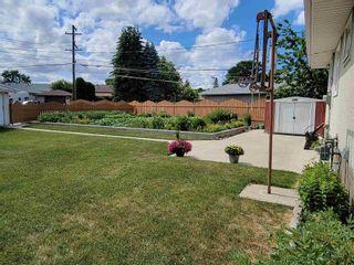 Photo 5: 3537 121A Avenue in Edmonton: Zone 23 House for sale : MLS®# E4253424