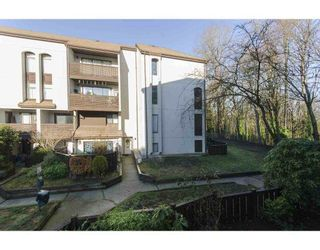 Photo 2: 19 365 GINGER Drive in New Westminster: Fraserview NW Townhouse for sale : MLS®# R2318406
