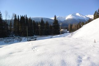 Photo 19: LOT A W 16 Highway in Smithers: Smithers - Town Land for sale (Smithers And Area (Zone 54))  : MLS®# R2533470