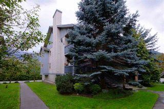 """Photo 14: 26 7410 FLINT Street: Pemberton Townhouse for sale in """"MOUNTAIN TRAILS"""" : MLS®# R2304651"""