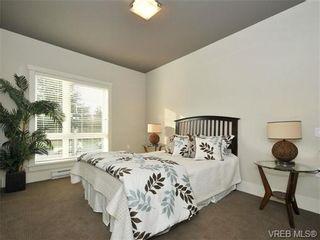 Photo 7: 205 982 McKenzie Ave in VICTORIA: SE Quadra Condo for sale (Saanich East)  : MLS®# 736301