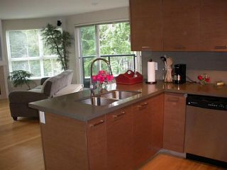 Photo 3: 303 3732 MT SEYMOUR Parkway in North Vancouver: Indian River Condo for sale : MLS®# V1045608