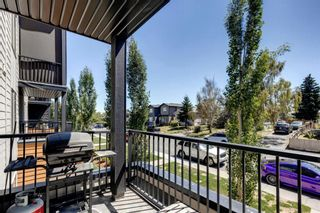 Photo 22: 4207 1317 27 Street SE in Calgary: Albert Park/Radisson Heights Apartment for sale : MLS®# A1126561