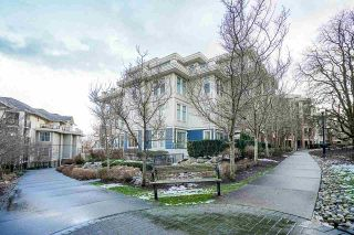 """Photo 38: 205 245 ROSS Drive in New Westminster: Fraserview NW Condo for sale in """"GROVE AT VICTORIA HILL"""" : MLS®# R2543639"""