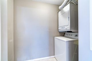 Photo 26: 1207 505 RAILWAY Street W: Cochrane Apartment for sale : MLS®# A1149928