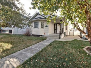 Photo 1: 15 Erin Link SE in Calgary: Erin Woods Detached for sale : MLS®# A1036964