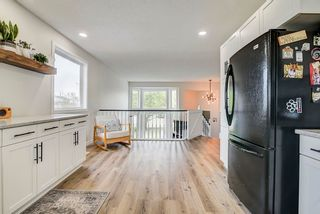 Photo 22: 22 WESTMEWS Drive: Fort Saskatchewan House for sale : MLS®# E4245512