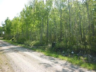 Photo 4: 1 Smits Avenue in Codette: Lot/Land for sale : MLS®# SK834450