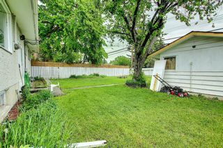 Photo 16: 1228 19 Street NE in Calgary: Mayland Heights Detached for sale : MLS®# A1118594