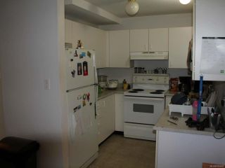 Photo 8: 106 262 BIRCH STREET in CAMPBELL RIVER: CR Campbell River Central Condo for sale (Campbell River)  : MLS®# 795652