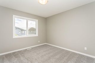 Photo 35: 7819 174 Avenue NW in Edmonton: Zone 28 House for sale : MLS®# E4257413