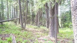 Photo 12: Lot B THOMPSON ROAD in Bonnington: Vacant Land for sale : MLS®# 2459440