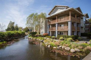 """Photo 16: 102 5600 ANDREWS Road in Richmond: Steveston South Condo for sale in """"LAGOONS"""" : MLS®# R2261531"""