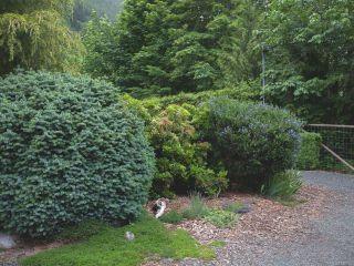 Photo 30: 9981 Swordfern Close in YOUBOU: Du Youbou House for sale (Duncan)  : MLS®# 836035