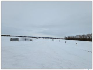 Photo 26: Harris Acreage in North Battleford: Residential for sale (North Battleford Rm No. 437)  : MLS®# SK842567
