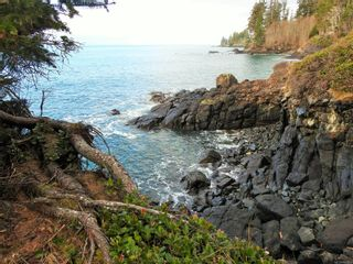 Photo 51: 2892 Fishboat Bay Rd in : Sk French Beach House for sale (Sooke)  : MLS®# 863163
