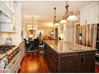 """Photo 6: 14492 29A Avenue in Surrey: Elgin Chantrell House for sale in """"ELGIN CHANTRELL"""" (South Surrey White Rock)  : MLS®# F1227891"""