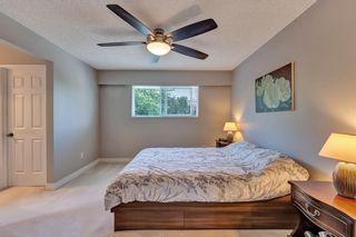 "Photo 18: 11155 SOUTHRIDGE Road in Delta: Sunshine Hills Woods House for sale in ""SUNSHINE HILLS"" (N. Delta)  : MLS®# R2584065"