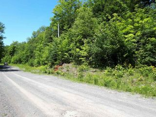 Photo 16: Meiklefield Road in Meiklefield: 108-Rural Pictou County Vacant Land for sale (Northern Region)  : MLS®# 202117504