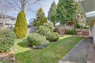 """Photo 33: 13527 14 Avenue in Surrey: Crescent Bch Ocean Pk. House for sale in """"Marine Terrace"""" (South Surrey White Rock)  : MLS®# R2552235"""