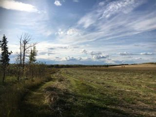 Photo 10: HWY 39 RR 34: Rural Leduc County Rural Land/Vacant Lot for sale : MLS®# E4235214