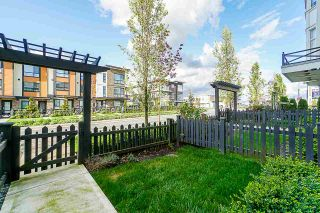 Photo 18: 72 20852 77A AVENUE in Langley: Willoughby Heights Townhouse for sale : MLS®# R2398984