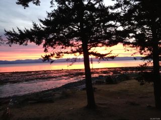 Photo 18: 3777 S ISLAND S Highway in CAMPBELL RIVER: CR Campbell River South House for sale (Campbell River)  : MLS®# 775066