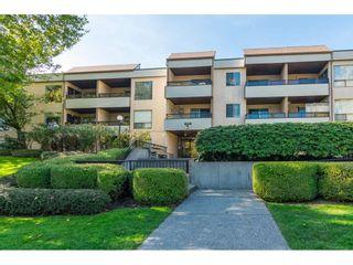 Photo 1: 211 10221 133A Street in Surrey: Whalley Condo for sale (North Surrey)  : MLS®# R2315771