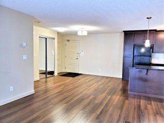 Photo 15: 438 6076 SCHONSEE Way in Edmonton: Zone 28 Condo for sale : MLS®# E4260047