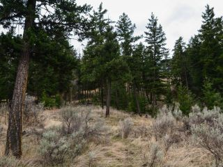 Photo 9: 5511 BARNHARTVALE ROAD in Kamloops: Barnhartvale Lots/Acreage for sale : MLS®# 161226