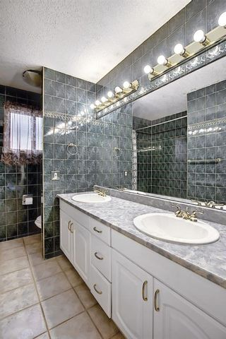 Photo 22: 10443 Wapiti Drive SE in Calgary: Willow Park Detached for sale : MLS®# A1128951