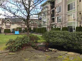 """Photo 19: 308 7089 MONT ROYAL Square in Vancouver: Champlain Heights Condo for sale in """"CHAMPLAIN VILLAGE"""" (Vancouver East)  : MLS®# R2540817"""
