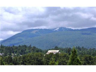 Photo 9: 316 223 MOUNTAIN Highway in North Vancouver: Lynnmour Condo for sale : MLS®# V944047