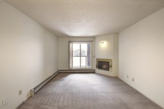 Photo 12: 2031 Edenwold Heights NW in Calgary: Edgemont Apartment for sale : MLS®# A1066741