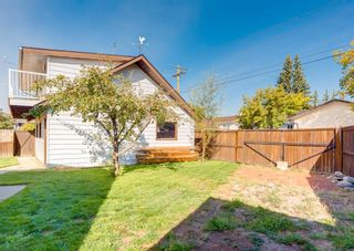Photo 29: 163 Whiteview Close NE in Calgary: Whitehorn Detached for sale : MLS®# A1146793