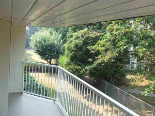 """Photo 16: 207 33401 MAYFAIR Avenue in Abbotsford: Central Abbotsford Condo for sale in """"MAYFAIR GARDENS"""" : MLS®# R2194662"""