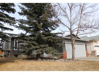 Photo 19: 166 TIPPING Close SE: Airdrie Residential Detached Single Family for sale : MLS®# C3512379